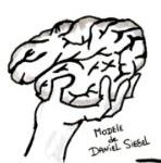 Un cerveau dans la main